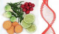 Dietas que curan: nutrigenómica y epigenética
