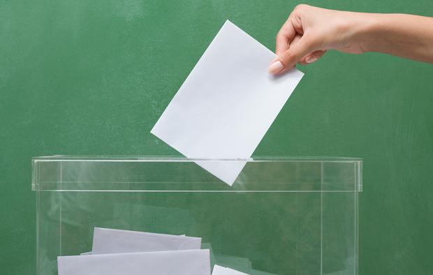 voto ELECCIONES FARMACIA