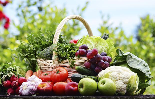 Nutricion; salud; comida sana; vive sano;