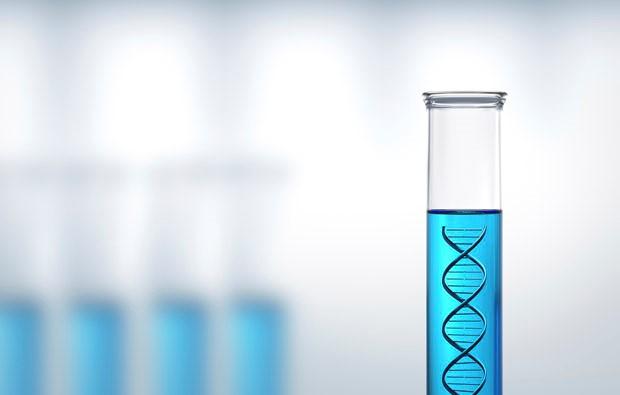 ADN-PROVETA