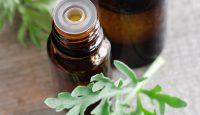 Medicamentos de Nobel: la artemisinina