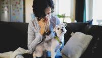 ¿Tienes alergia a tu mascota?